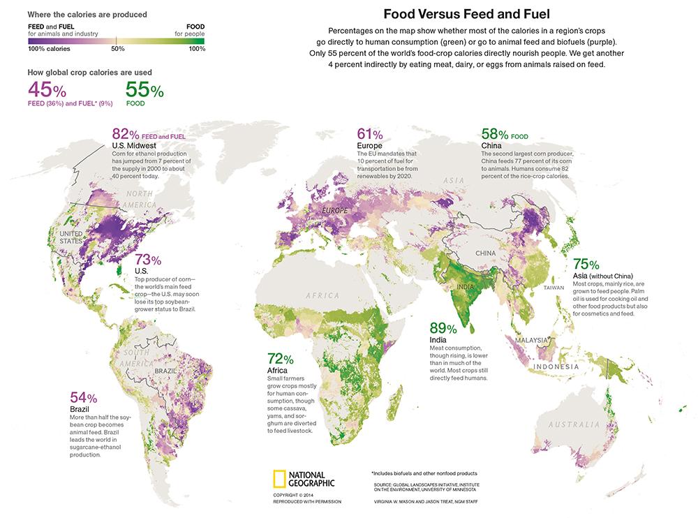Biocombustíveis, a natureza em jogo